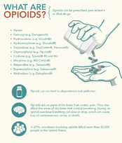 What are Opiods-1